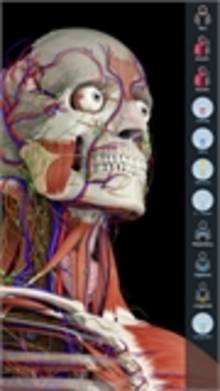 Materiales a examen: App Essential Anatomy